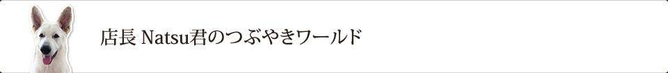 店長 Natsu君のつぶやきワールド