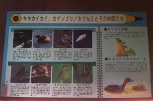 生息する鳥