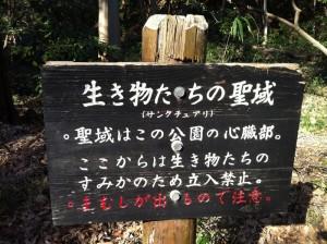 森の中にある表示
