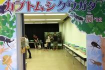 世界のカブトムシ、クワガタ展