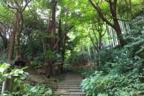 瑞泉寺 入り口4