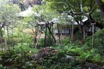 瑞泉寺 本堂と仏殿